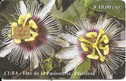 CARTE PUCE-CUBA-ETECSA--10USD -FLOR De La Pasionaria-R°Glacé-UTILISE-TBE-RARE - Fleurs