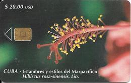 CARTE PUCE-CUBA-ETECSA--20USD -HIBISCUS-R°Glacé-UTILISE-TBE-RARE - Fleurs