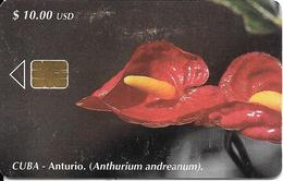 CARTE PUCE-CUBA-ETECSA--10USD -ANTURIUM-R°Glacé-UTILISE-TBE-RARE - Fleurs