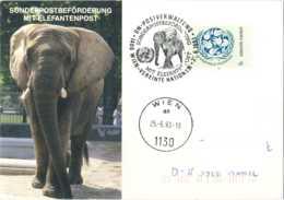 4219  Eléphant: Oblit. + C.p. Zoo Vienne, Nations Unies 1993 -  Elephant Special Cancel & Postcard, Vienna Zoo, UN - Elefanten