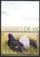 Belgium 2017 Mi. 4774 MNH, Hautes Fagnes Game Bird, Black Grouse, Lyrurus Tetrix, Tétras Lyre Birkhuhn Korhoen - Gallinacées & Faisans