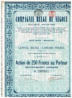Titre Ancien - Compagnie Belge De Négoce Société Anonyme - Titre De 1921 - Actions & Titres