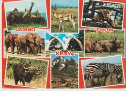 CP -  JAMBO FROM KENYA - 9 VUES - EAST AFRICA - 1497 - FRANK - MULTIVUES - ANIMAUX - Kenia
