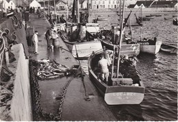 KERITY-PENMARC'H. Le Port - Penmarch