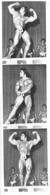 HOMME EN MAILLOT DE BAIN CULTURISME CULTURISTE  28X7.50CM - Reproductions