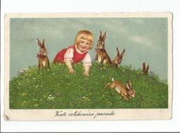 Postcard Easter Uskrs Vaskrs Ostern Paques Pascua Husvet Pasqua Vesele Velikonocne Praznike 1926 - Pâques