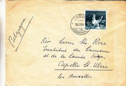 Liechtenstein - Lettre De 1946 - Oblit Vaduz - Exp Vers Capelle St Ulric - Lièvres - Covers & Documents