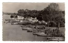 91 ESSONNE - EVRY PETIT BOURG La Seine Et Le Camping - Evry