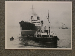 COSTALIN + MAYCOCK ON MERSEY 1930S - MODERN - Cargos