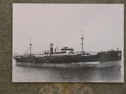 GRAIG SHIPPING GRAIG 1924 CARDIFF - MODERN - Cargos