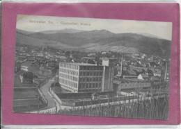 68.- GUEBWILLER , Alsace - Guebwiller