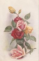 """A.F. Armitage"" Beautiful Roses"" Tuck Oilette Fair Flora Series PC # 8455 - Quinton, AR"