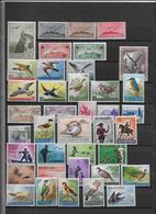 Thème Oiseaux - Saint Marin -  Neufs **/*/oblitérés - Collections, Lots & Séries