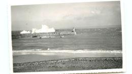 50* DIELETTE CPSM Port - France