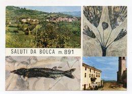 Bolca (Verona) - Saluti Da - Cartolina Multipanoramica - Non Viaggiata - (FDC15033) - Verona
