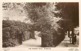 THE PARADE WALK - MUMBLES ~ AN OLD REAL PHOTO POSTCARD #91516 - Glamorgan
