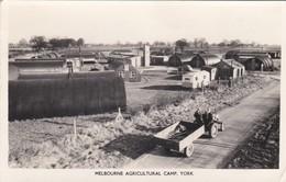 CARTOLINA - POSTCARD - AUSTRALIA - MELBOURNE - AGRICULTURAL CAMP.YORK - Melbourne