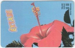 BRASIL H-713 Magnetic Telpe - Plant, Flower - Used - Brasilien