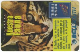 ECUADOR A-038 Prepaid BellSouth - Animal, Cat, Ocelote - Used - Ecuador