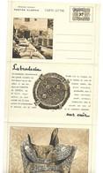 Entier Carte Lettre Neuve . La Broderie Sur Cuir . - Covers & Documents