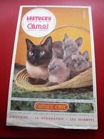 CHOCOLAT LUSTUCRU CEMOI GRENOBLE BUVARD Collection Illustré CHATS CHATON CAT Publicitaire Publicité Alimentaire Chocolat - Cocoa & Chocolat
