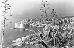 Cartolina Dubrovnik View Panorama - Unclassified
