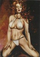 Cartes De Collection - Jennifer Janesko - Comic Image 15 - Pin Up - Other