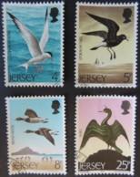JERSEY 1975 SEA BIRDS SET OF 4 VFU MARINE LIFE TERN PETREL GEESE SHAG - Jersey