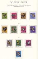 Suisse,Wohltätigkeitsmarken, Timbres De Bienfaisance, PRO JUVENTE,  1967+68+69,   Cote  4.75€ (W19016/53) - Pro Juventute