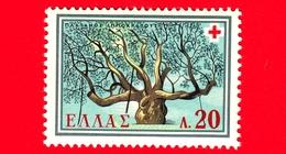 Nuovo - MNH - GRECIA - 1959 - Croce Rossa - Platano Di Ippocrate - 20 - Grecia
