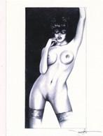 Cartes De Collection - Jennifer Janesko - Comic Image 30 - Pin Up - Autres Collections