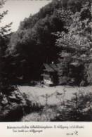 2 AK Strobl Am Wolfgangsee Im Salzkammergut, Volksbildungsheim St.Wolfgang (Waldhaus), Um 1955 - Österreich