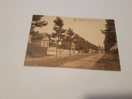 A 1315 - Waremme Boulevard Des Platanes - Waremme