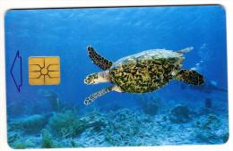 ANTILLES NEERLANDAISES BONNAIRE REF MV CARDS BON-14  Année 1999 TORTUE - Antillen (Nederlands)