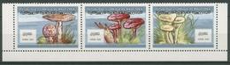 Mauretanien 2000 Pilze Trichterling Schirmling 1058/60 A ZD Postfrisch (C24649) - Mauretanien (1960-...)
