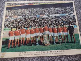 SPORT LISBOA E BENFICA - EQUIPA VENCEDORA DO CAMPEONATO NACIONAL E TAÇA DE PORTUGAL 1963/64 - FOTOGRAFIA ORIGINAL - Sports