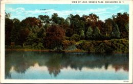 New York Rochester Seneca Park View Of Lake 1929 Curteich - Rochester