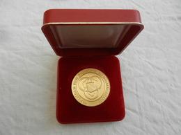Médaille De Table Wein-pramierung 1985 - Verliehen Vom Badischen Weinbauverband - Allemagne