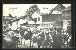 AK Sarajewo, Carsija, Strassenszene Mit Lasteseln - Bosnie-Herzegovine