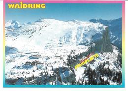 3003j: AK 6384 Waidring, Schigebiet Auf Der Steinplatte, Ungelaufen - Kitzbühel