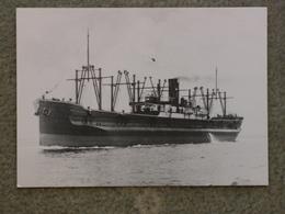 WELLINGTON - LARGEST CARDIFF SHIP 1905 - MODERN - Cargos