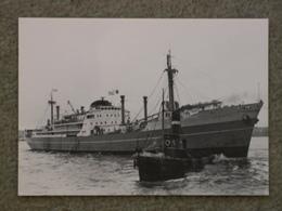 SOUTH AMERICAN SAINT LINE ST ESSYLLT - MODERN - Cargos