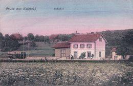 Gruss Aus Kallnach BE, Bahnhof, Chemin De Fer Et Gare (7133) - BE Berne