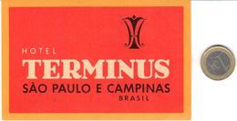 ETIQUETA DE HOTEL  - HOTEL TERMINUS  -SAO PAULO E CAMPINAS  -BRASIL - Hotel Labels