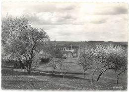 CPSM FOUGEROLLES Au Printemps - Ed. La Cigogne N°70.245.02 - Autres Communes