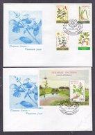 Belarus 1996 Flora Of Belarus - Herbs FDC - Bielorussia