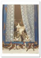 Funny CAT Kittens Look At The Sparrows By Ürkün Russian Unposted Postcard - Animals