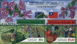 Ref. 93091 * NEW *  - SOLOMON Islands . 1998. COOPERACION TECNICA DE CHINA - Islas Salomón (1978-...)