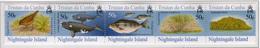 2006 - TRISTAN DA CUNHA - Yv.  Nr. 817/821 - (UP131.23) - Tristan Da Cunha