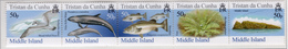 2006 - TRISTAN DA CUNHA - Yv.  Nr. 822/826 - (UP131.23) - Tristan Da Cunha